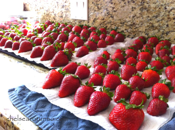 lots-of-strawberries