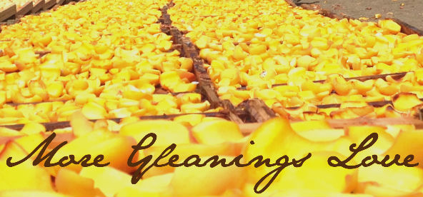more-gleanings-love