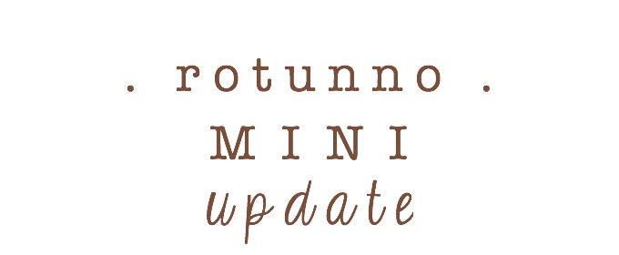1-mini-update