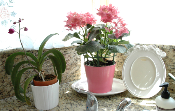 1-miniupdate-kitchen-flowers